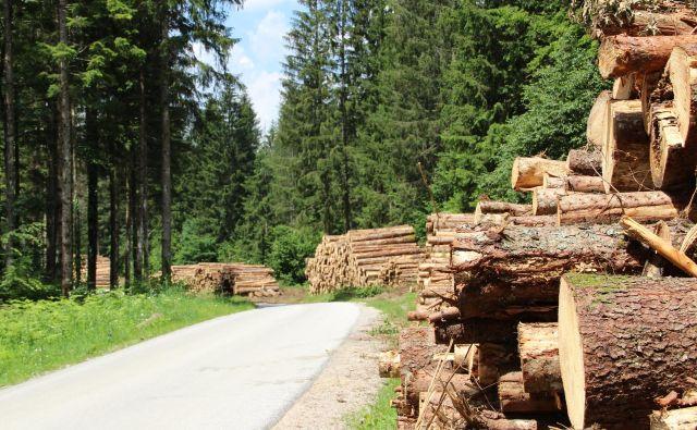 Zaradi naravnih ujm takšni prizori na številnih koncih Slovenije niso redkost. Foto Simona Fajfar