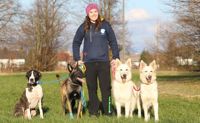 Psi se morajo najprej dobro sprehoditi, šele potem je mogoče delati z njimi, pravi Tjaša Kovač. FOTO: Tomi Lombar/Delo