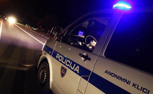 Policisti so vozniku odredili preizkus alkoholiziranosti. FOTO: Tadej Regent/Delo