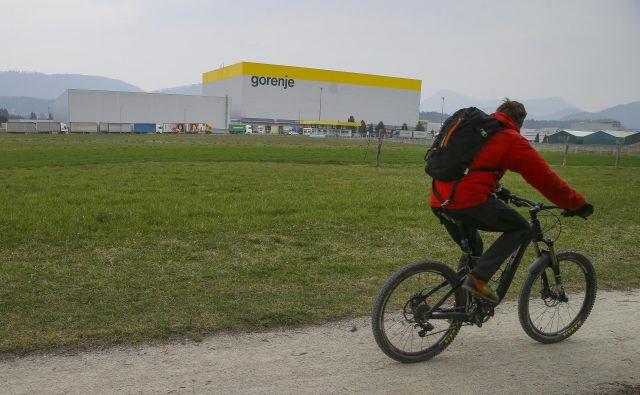 Gorenje je lani s tekočim poslovanjem ustvarilo kar 41 milijonov evrov slabši rezultat kot predlani Foto Jože Suhadolnik