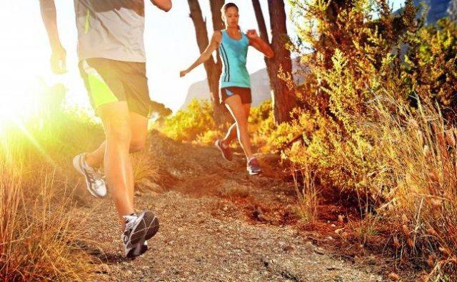 Tek Foto Shutterstock