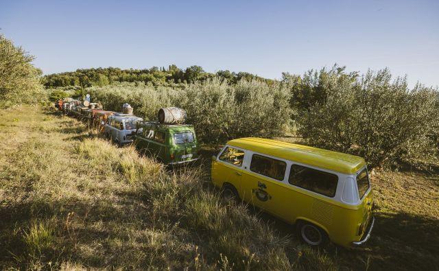 ▲▲ Izobraževalni izlet med oljčniki popestrijo starodobniki, ki so od znotraj obdani z oljčnim lesom. Foto Matia Scukovt
