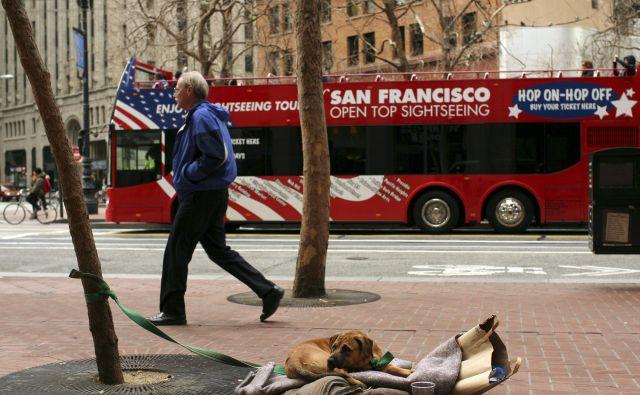 San Francisco je bil pred pol stoletja srce hipijevskega gibanja, danes pa je enakost le še privid. FOTO: Reuters