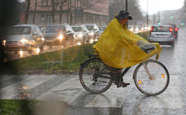 Padavine bodo predvidoma najintenzivnejše od jutrišnjega večera do četrtka zjutraj. FOTO: Tomi Lombar/Delo
