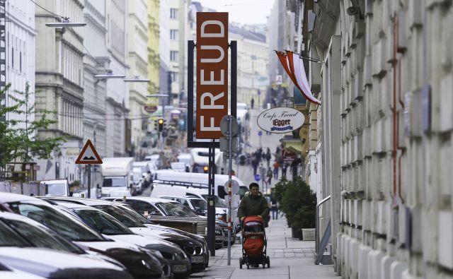 Dunaj je mnogim tujim agentom tako všeč, da po upokojitvi postanejo Dunajčani. FOTO: Jože Suhadolnik/Delo