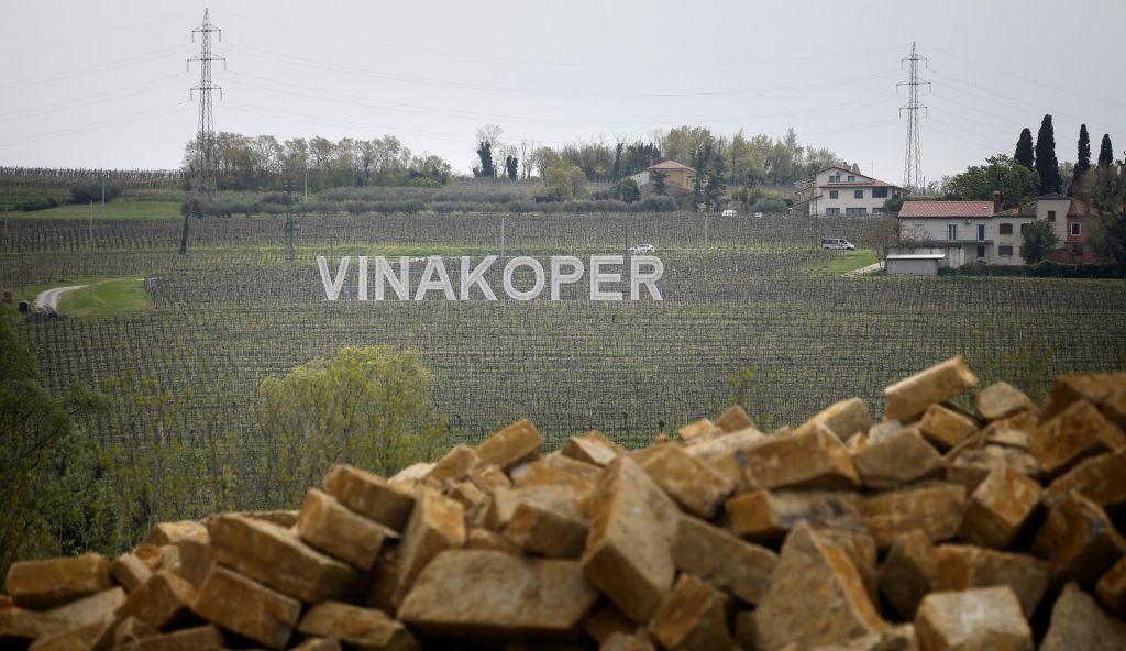 Šeststo hektarov razlogov za nakup Vinakopra