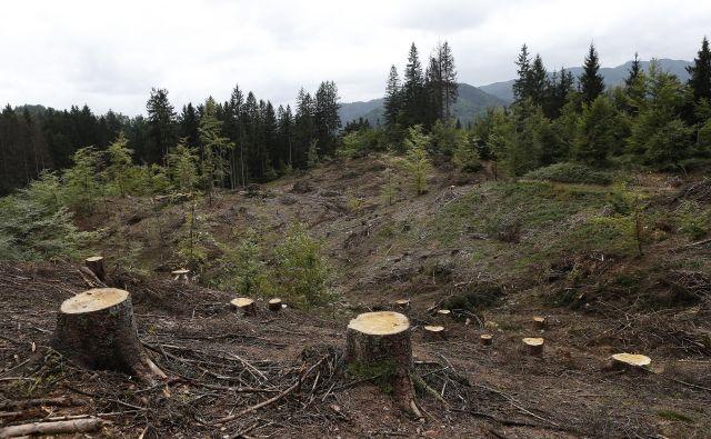 Predlog uredbe o širitvi vodovarstvenega območja na Pernikih je bil vložen že pred desetletjem. FOTO: Blaž Samec/Delo