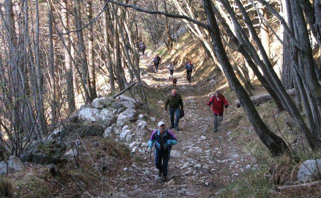 V okviru akcije Slovenija hodi bodo letos potekali festivali na devetih območjih. Foto Katja Željan