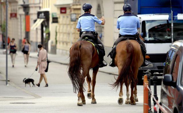 V javnem sektorju se je v zadnjih letih finančni položaj najbolj popravil vojakom in policistom. Foto Roman Šipič