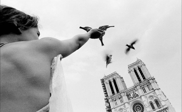 Pritisk na sprožilec fotoaparata natanko v pravem trenutku. FOTO: Voranc Vogel/Delo