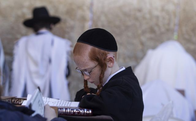 Judovski dečki so vse otroštvo brali svete knjige, a niso znali povedati imena enega samega drevesa ali ptice. Foto Reuters