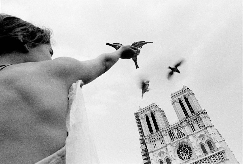 Notre-Dame, natanko v pravem trenutku