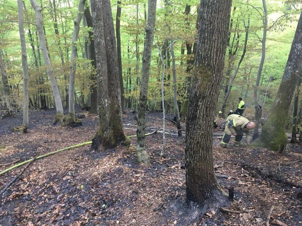 FOTO:Požar nad kamnolomom pogasili