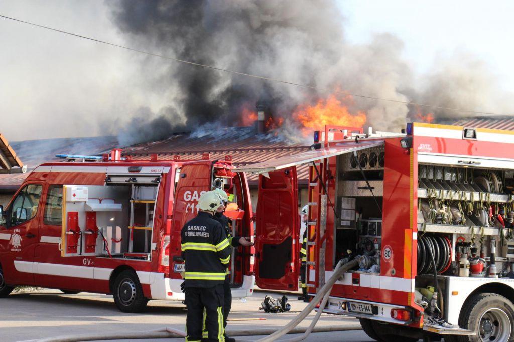 Ne le gasilci, grešil je tudi njihov direktor