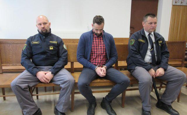 Sojenje Anžetu Jelenu se bo nadaljevalo junija. FOTO: Špela Kuralt/Delo