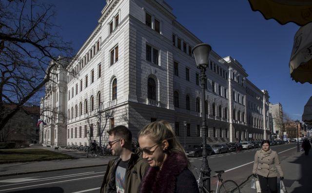 Javna polemika se je vrtela okoli definicije kaznivega dejanja. FOTO:Voranc Vogel/Delo