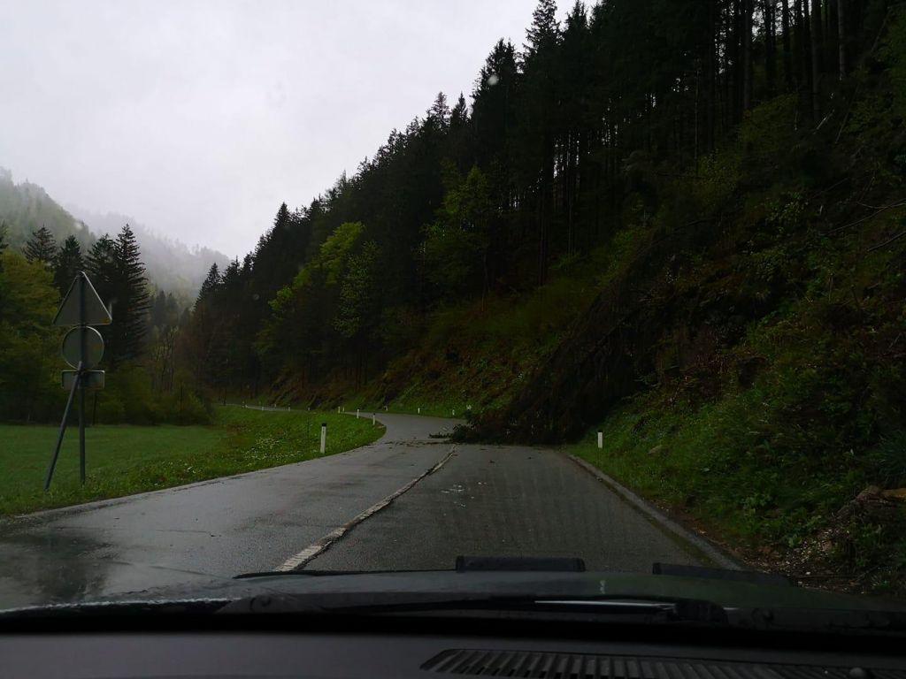 Podrto drevo zaprlo pas ceste Spodnje Jezersko–Preddvor