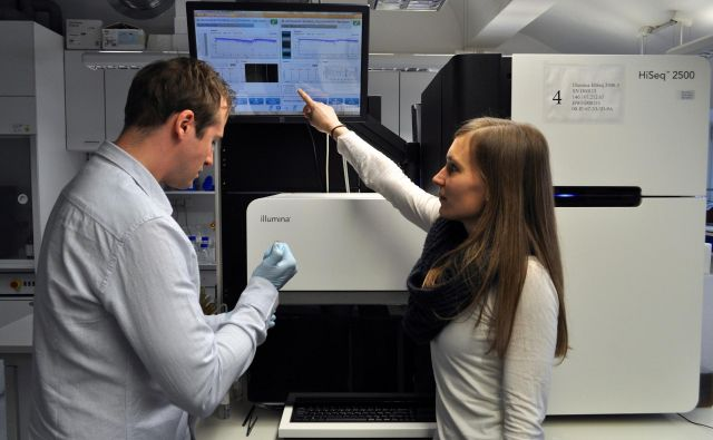 Skupina slovenskih in tujih raziskovalcev je v eni vodilnih znanstvenih revij s področja molekularne biologije Molecular Cell opisala celično regulatorno mrežo, ki razloži prve razvojne dogodke, ki vodijo v učinkovito diferenciacijo matičnih celic in razvoja zarodka. FOTO: IJS