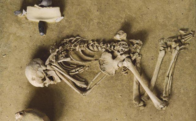 ◀ Bojevnik z bojno sekiro iz mlajše kamene dobe, iz groba v Wennungenu. Foto Deželni zavod za zaščito kulturnozgodovinskih spomenikov in arheologijo Saške - Anhalta