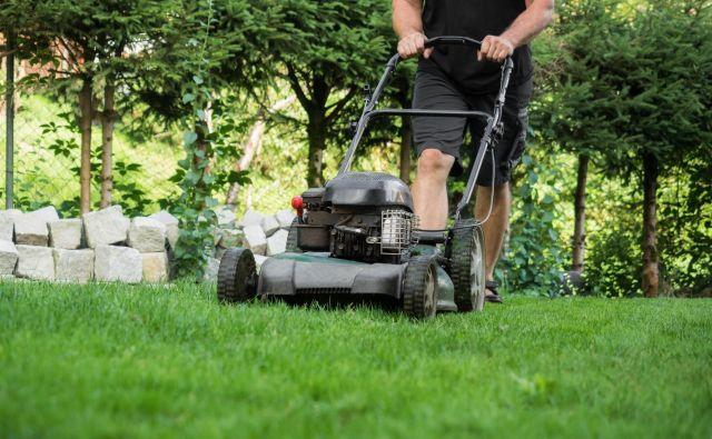 Vonj pri košenju trave je izrazit predvsem zato, ker poškodujemo veliko število rastlin. FOTO: Shutterstock