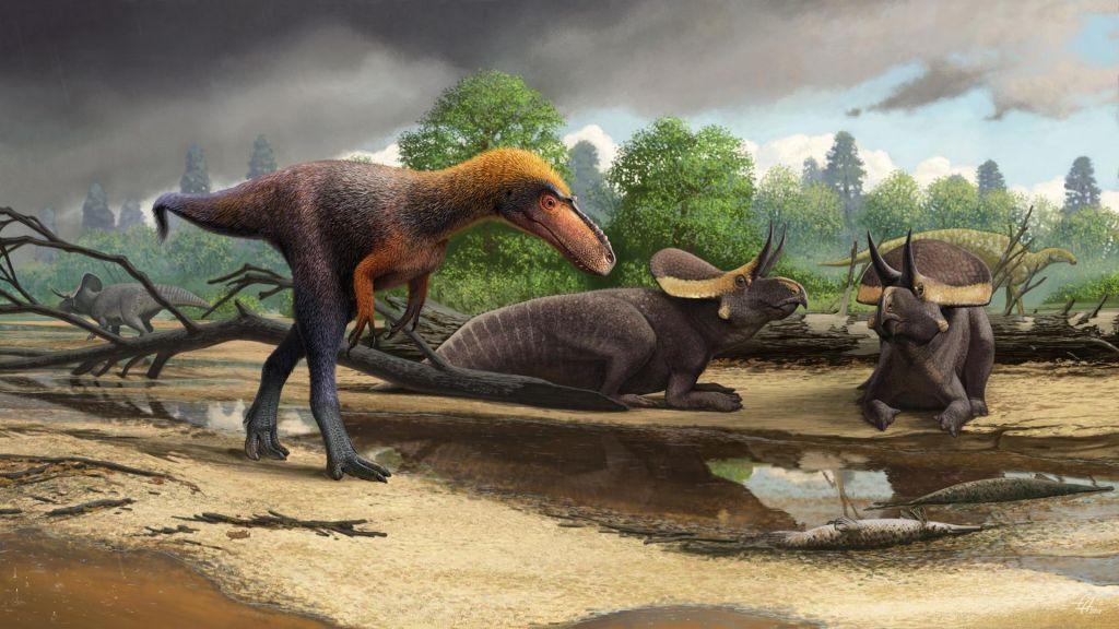 Odkrili manjšega bratranca zloveščega T. rexa
