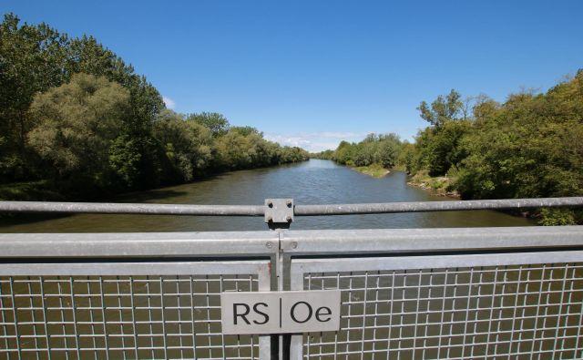 Eno od razširitev Mure ob meji so Avstrijci naredili pri mostu med Črnci in Donnersdorfom. FOTO:Jože Pojbič/Delo