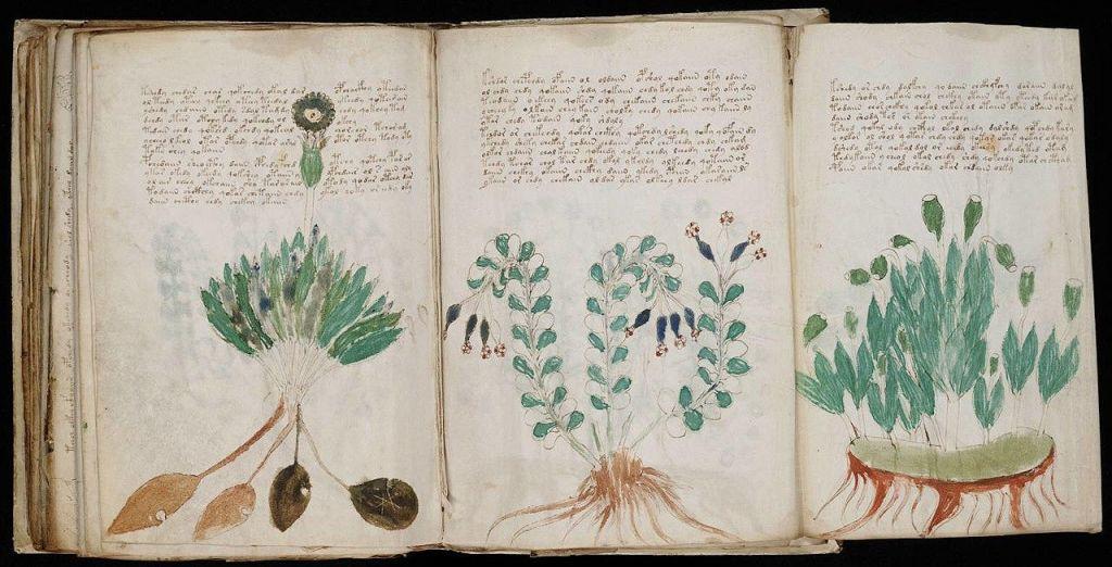 Najskrivnostnejši srednjeveški rokopis naposled dešifriran