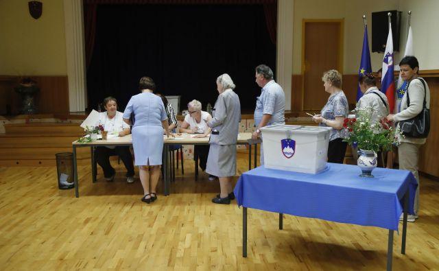 V nedeljo, 26. maja, se bodo za glasove volivcev potegovali 103 kandidati na 14 listah. FOTO Leon Vidic/Delo