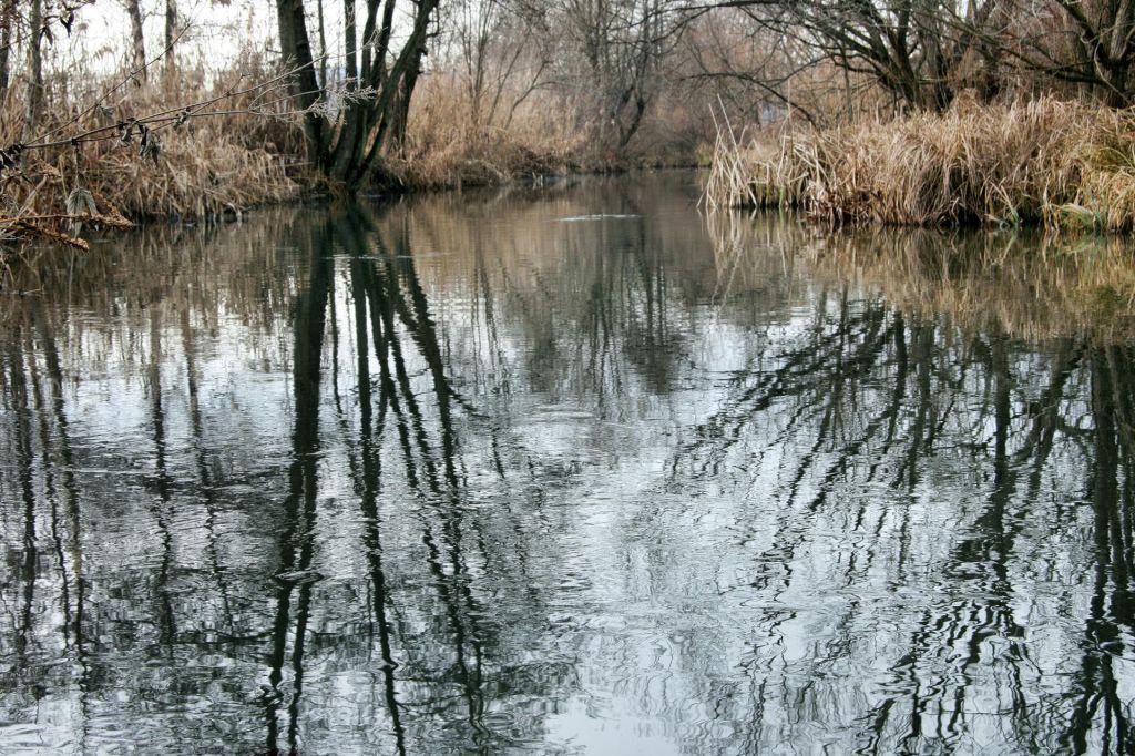 Obnovljen krajinski park Vrbje