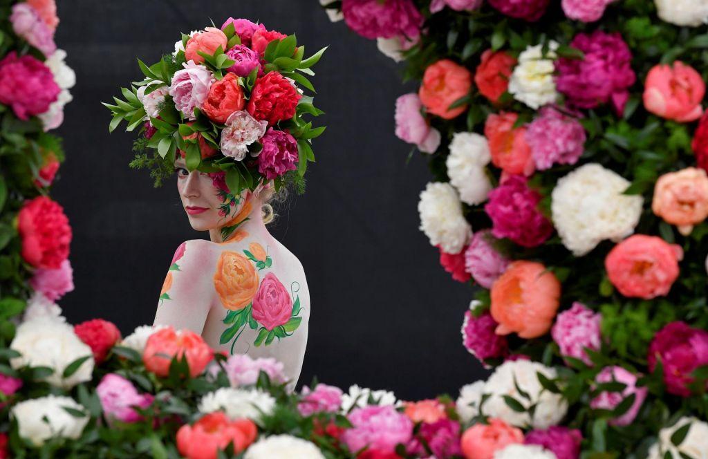 FOTO:Rože se na ogled postavijo