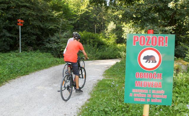 Dajmo najprej besedo tistim, ki so sprožili in dosegli sodno odločbo o neizvajanju odstrela določenega števila medvedje in volčje populacije v Sloveniji. Foto Marko Feist