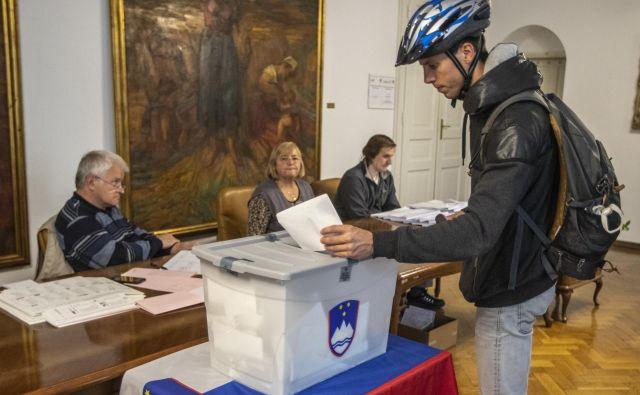Predčasne volitve v evropski parlament v Ljubljani. FOTO: Voranc Vogel/Delo