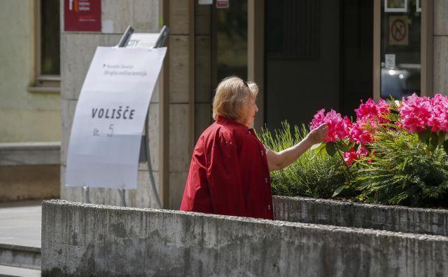 Volitve v Knjižnici Bežigrad v Ljubljani. FOTO: Matej Družnik/Delo