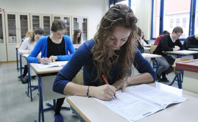 Poklicnim maturantom prehod na višjo raven izobraževanja ne bi smel biti povsem zaprt, vendar se lahko število tistih, ki opravljajo dodatni izpit iz splošne mature, do leta 2028 izenači s številom splošnih maturantov. FOTO: Leon Vidic