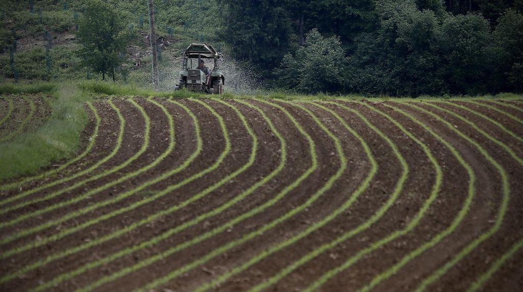 Skladova zemlja od kmetijskih podjetij mladim kmetom