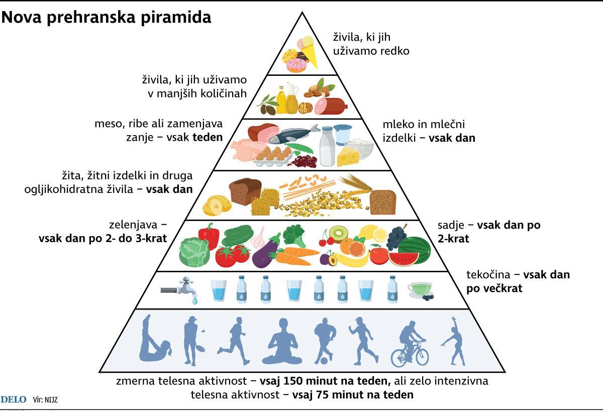 Rezultat iskanja slik za hrana piramida