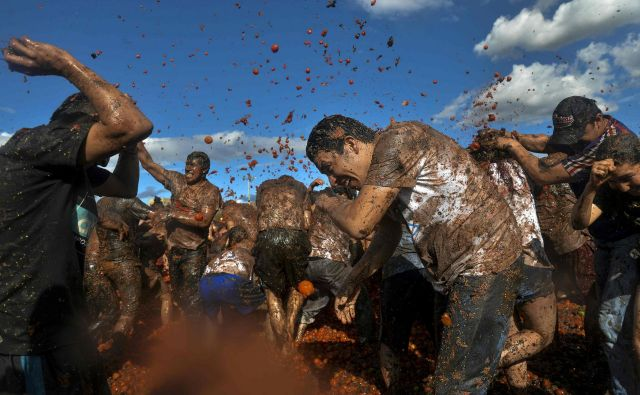 V kolumbijskem mestu Sutamarchan je potekal že deseti festival Tomatina, na katerem se udeleženci obmetavajo s paradižniki. FOTO: Diana Sanchez/AFP