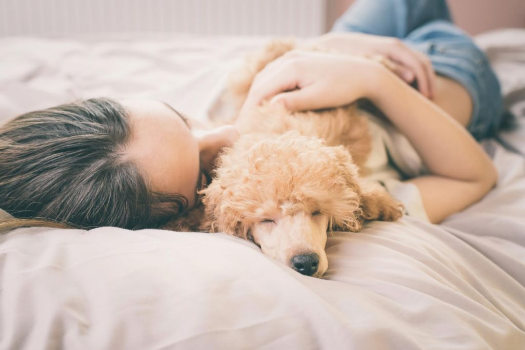 Revolucija v ženskem spanju