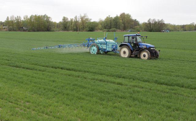 Na poljih v Trimlinih pri Lendavi očitno ne bo velerastlinjakov. FOTO: Jože Pojbič/Delo