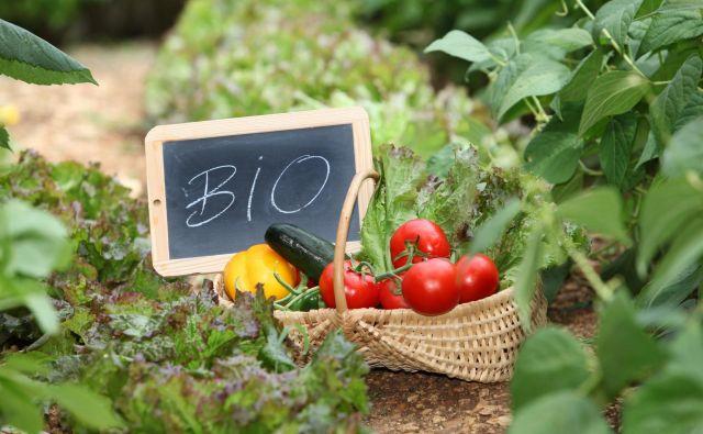 Ekološka pridelava hrane je predvsem do narave prijazna. Foto Shutterstock
