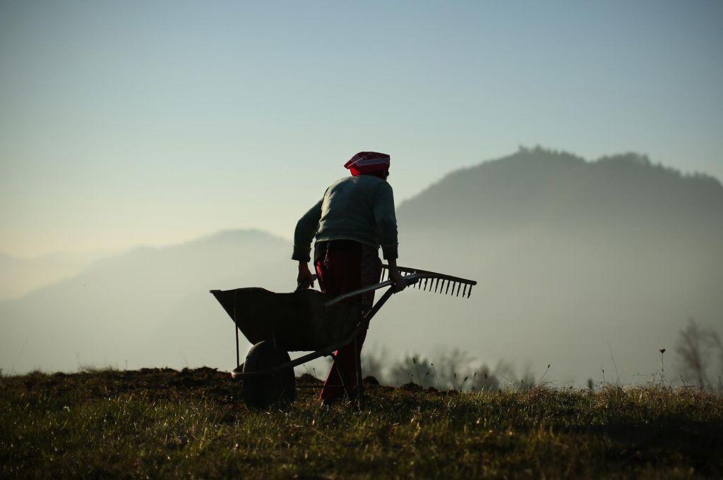Podjetja in kmetje v bitki za zemljo