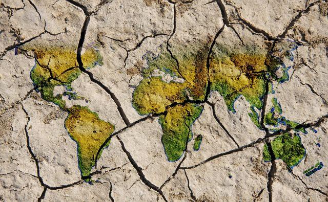 Ohranjena in rodovitna tla so naravni vir, nujen za pridelavo hrane, industrijskih surovin in pridobivanje energetskih virov. FOTO: arhiv