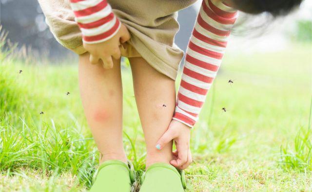 Da ste magnet za komarje, lahko po večini pripišete svojim genom. FOTO: Shutterstock