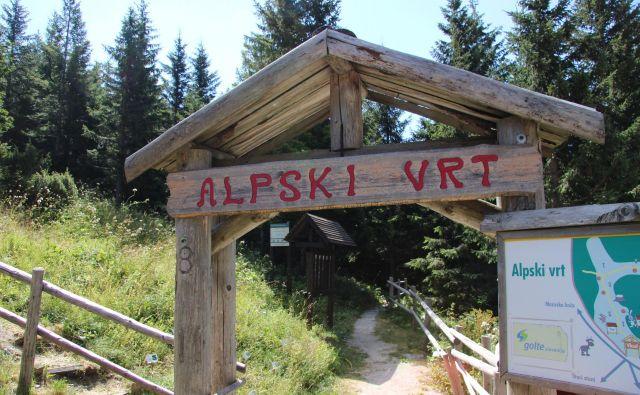 Začetek poti v alpkskem vrtu. FOTO: Brane Piano