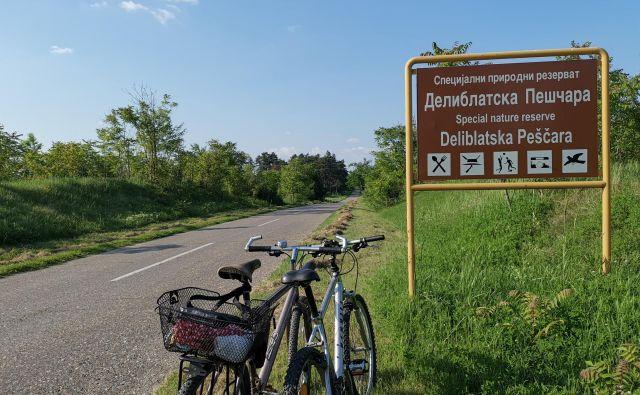 Po Deliblatski peščari je najbolje kolesariti. Foto Milena Zupanič