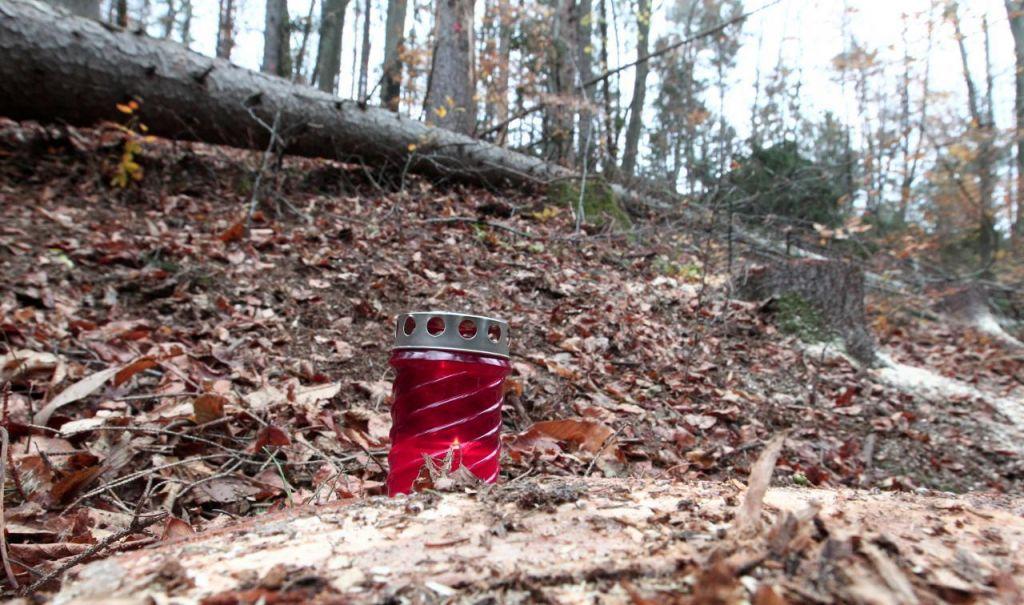 Podrto drevo smrtno poškodovalo 57-letnika