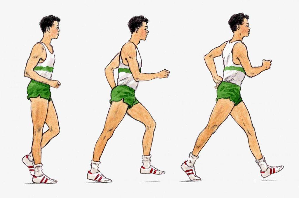 Tekmovalna hitra hoja