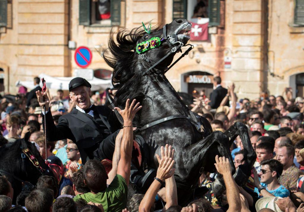 FOTO:Moj črni konj ne rabi uzde
