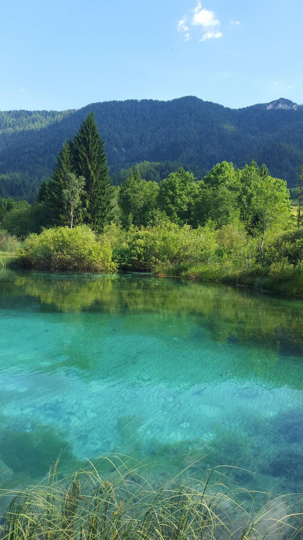 FOTO:Slovenijo ohranjamo za zanamce