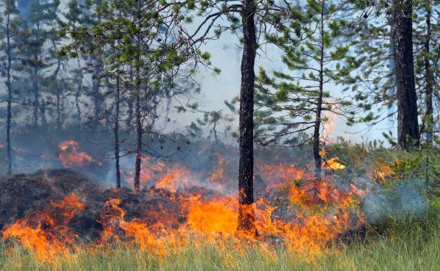 Na omenjenih območjih, kjer so razglasili oranžen alarm, bo inšpektorat RS za varstvo pred naravnimi in drugimi nesrečami in policija še naprej izvajala poostren nadzor, so sporočili. FOTO: Shutterstock